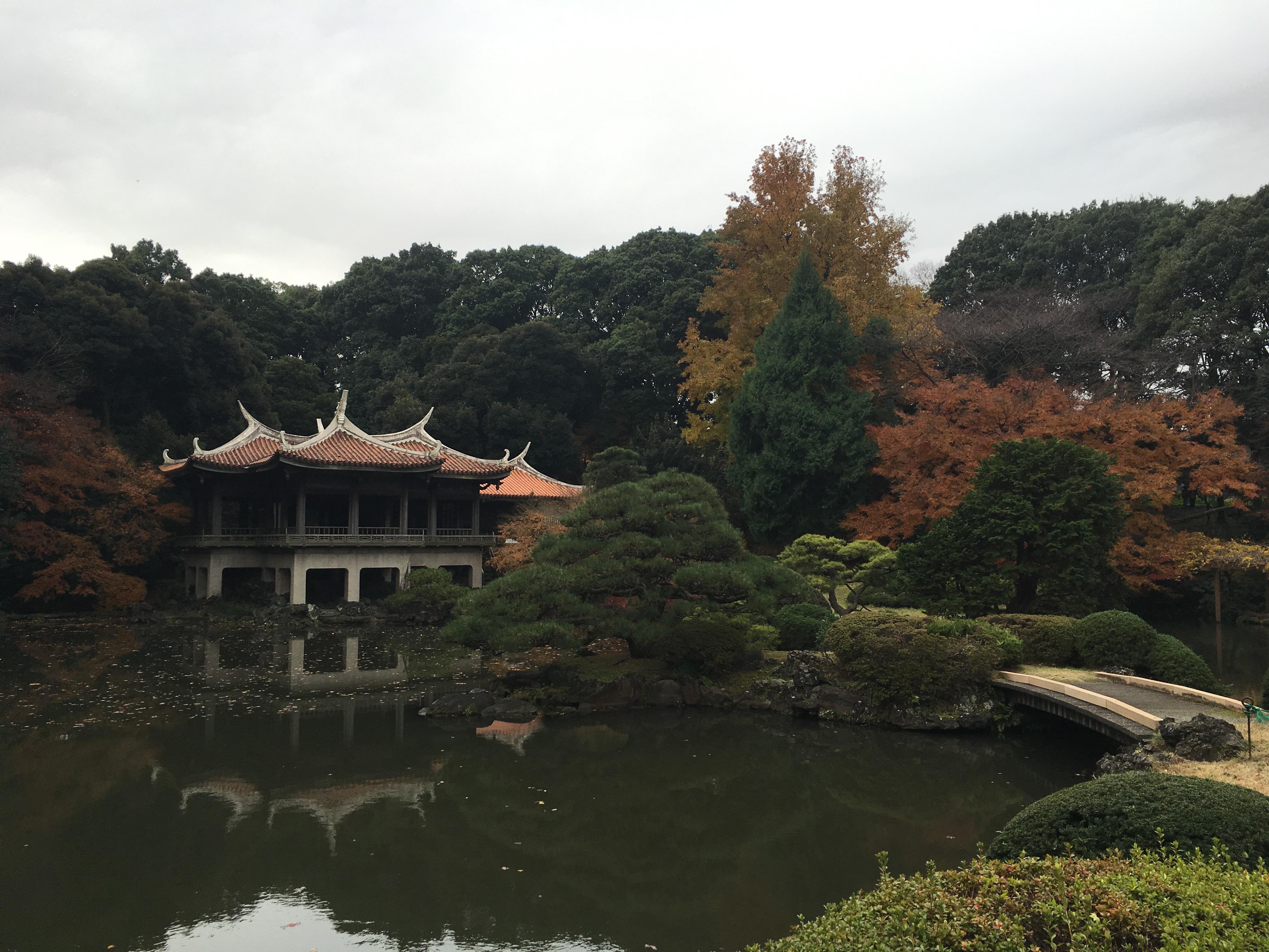 Shinjuku Gyoen National Garden.jpg