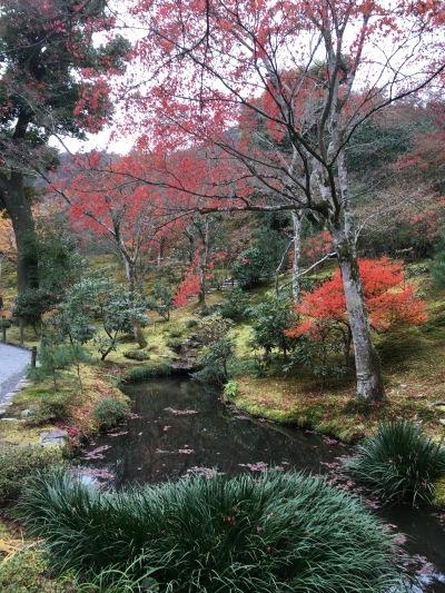 Zen Garden Kyoto